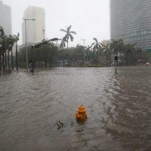 """Nusilpęs uraganas """"Irma"""" Floridoje padarė didžiulių nuostolių"""