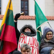 R. Karbauskis: atsakomybę už etatinio apmokėjimo klaidas turi prisiimti ir prezidentė