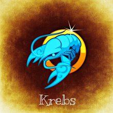 Dienos horoskopas 12 zodiako ženklų (liepos 20 d.)
