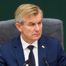 Seimo pirmininkas: Lietuvos ir Lenkijos santykiai stringa dėl smulkmenų