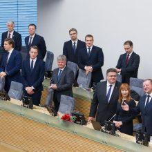 Kandidato į aplinkos ministrus paieškos: ar Vyriausybė liks be moterų?