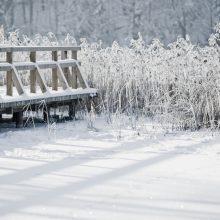 Orai: šaltis stiprės, o dėl smarkaus vėjo bus dar šalčiau