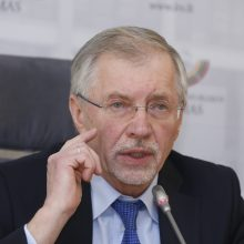 G. Kirkilas: Lietuva netinkamai priešinasi Astravo AE