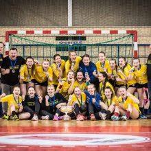 Smūgis čempionams: profesionalaus tinklinio Vilniuje nereikia?