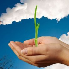 Klimato kaitos programai – 134 mln. eurų parama