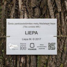 Gamtos puoselėtojai medžiams suteikė vardus