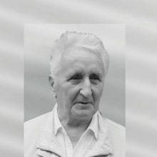 Mirė buvęs Seimo narys, Šiaulių garbės pilietis K. Šavinis