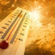 Nerimą keliančios klimato kaitos prognozės: esame paskutinė karta