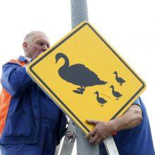 Sparnuočių saugumui – nauji kelio ženklai uostamiestyje