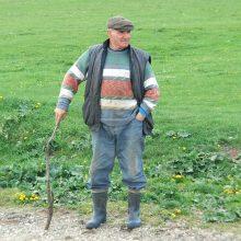 Ūkininkų vargai: dėl karšto ir sauso oro kenčia daržovės