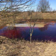 Vilniaus rajone teršalų valymo paslaugos pirktos su pažeidimais
