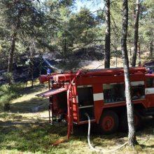 Ugniagesius ant kojų sukėlė degantis Neringos miškas