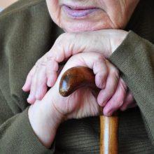V. Šapoka: pensijos amžiaus ilginti neplanuojama