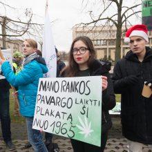 Prie Seimo apie 100 žmonių ragino švelninti bausmes už kanapių turėjimą