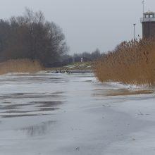 Ledas nuvylė žvejus, bet džiugina gyventojus