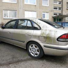 Vaizdas: klaipėdiečius erzina kiemuose ilgus metus stovintys automobiliai vaiduokliai.