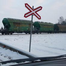 """Tranzitas: """"Belaruskalij"""" trąšos yra dažniausiai per Lietuvą gabenamas baltarusiškas krovinys."""