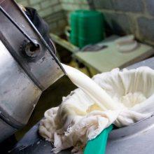 Pieno perdirbėjai turi gerų naujienų ūkininkams