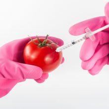 Įsigaliojus sutarčiai Lietuvą užplūs genetiškai modifikuoti produktai?