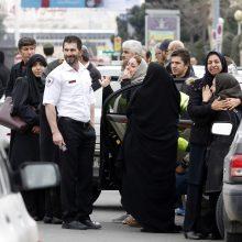 Teheranas atnaujino dingusio lėktuvo paiešką