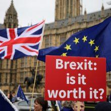 """D. Grybauskaitė perspėja: šiemet gali nepavykti susitarti dėl """"Brexit"""""""