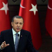 Turkijos parlamentas pritarė pirmalaikiams prezidento ir parlamento rinkimams