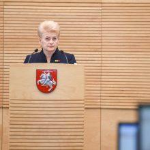 """D. Grybauskaitė """"nusidegino pirštus"""": ką iš tiesų reiškia šie žodžiai?"""