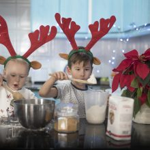 Kalėdų nostalgija įkvėpė ne tik parodą, bet ir norą grįžti namo