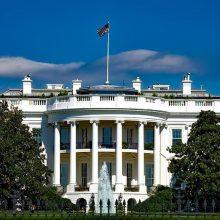 Įtakingas D. Trumpo rėmėjas: kodėl JAV turėtų ginti Baltijos šalis?