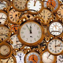 EP nagrinės laiko kaitaliojimo problemą