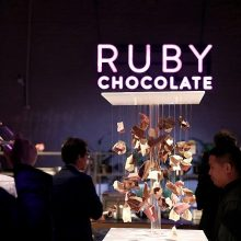 Šveicarijos konditeriai išrado naują šokolado rūšį