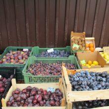 Turguje atpigo slyvos, bulvės, o vynuogių kaina pasiekė rekordines žemumas