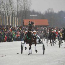 """Ryškėja žirginio sporto šventės """"Sartai 2018"""" kontūrai"""