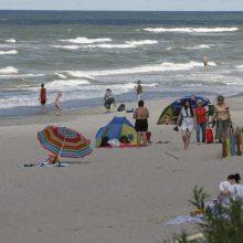 Baltijos jūros vandenyje ieškojo vibrio bakterijos