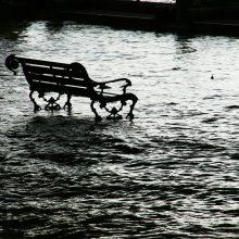 Mokslininkė: lietuviai nesuvokia klimato kaitos keliamų grėsmių