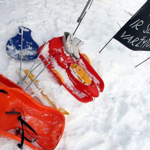 Pasaulinė sniego diena Pažaislyje  © Evaldo Šemioto nuotr.