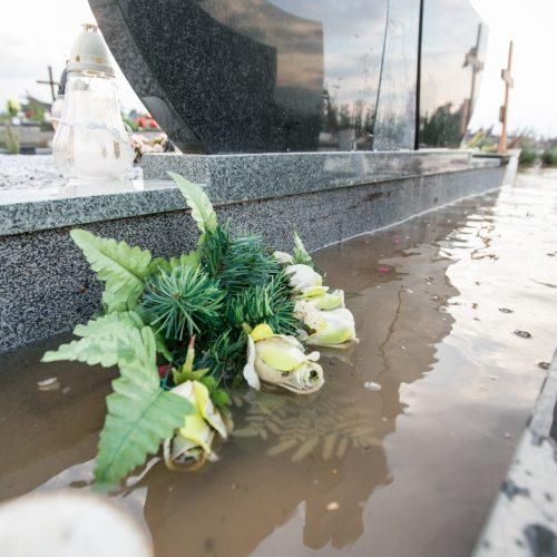 Apsemtos Vainatrakio kapinės