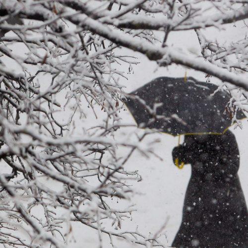 Vilnių užklojo sniegas