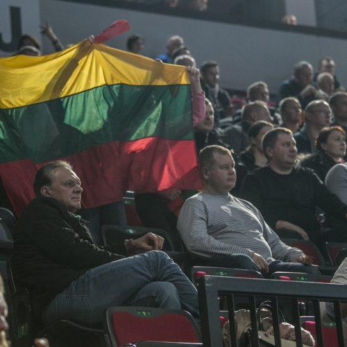 Lietuva - Gruzija 24:20  © Vytauto Petriko nuotr.