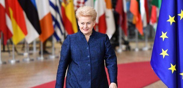 Davose D. Grybauskaitė sieks atkreipti pasaulio dėmesį į Rusiją