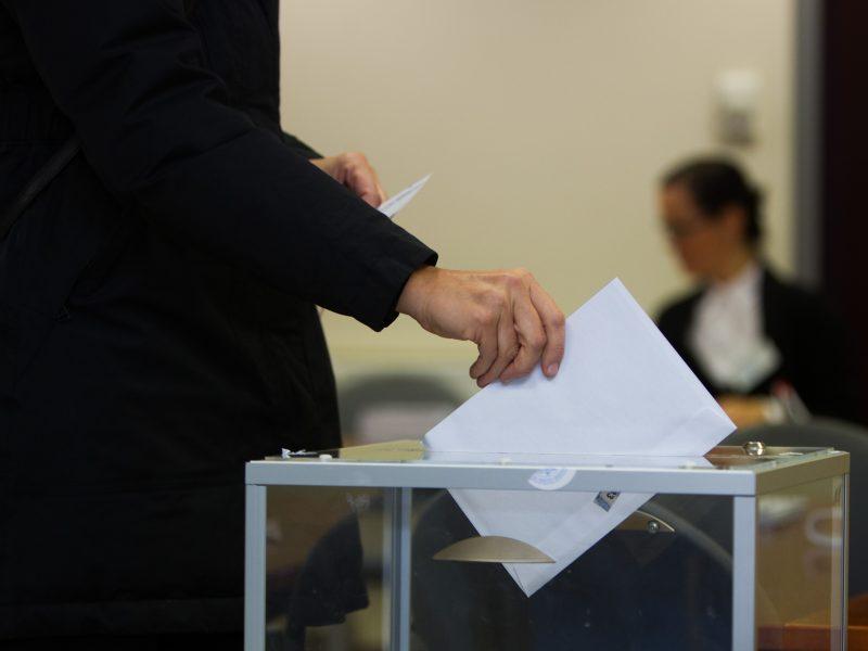 Dėl Seimo nario mandato Zanavykų apygardoje rungsis aštuoni politikai
