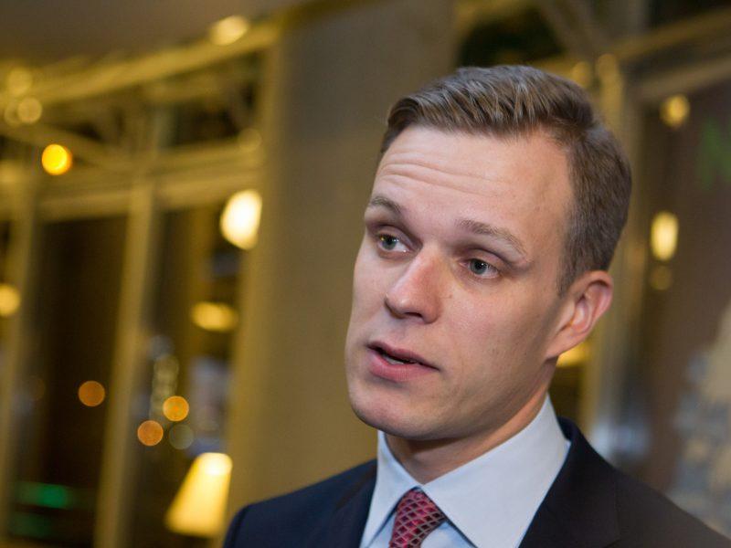 """G. Landsbergis: vyksta """"valstiečių"""" karas prieš visus"""