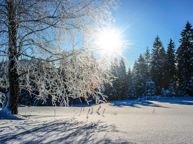 Orai: žiemiško šalčio neliks nė kvapo