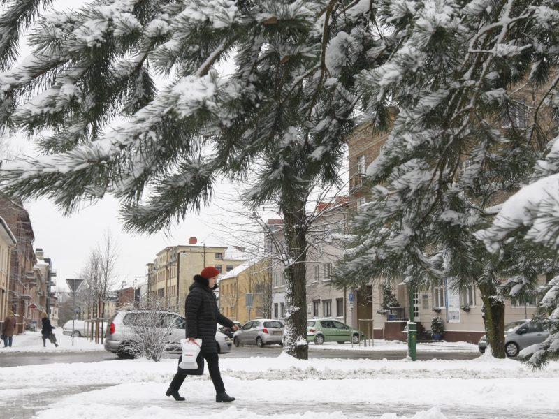 Ar šventinį miestą papuoš sniegas?