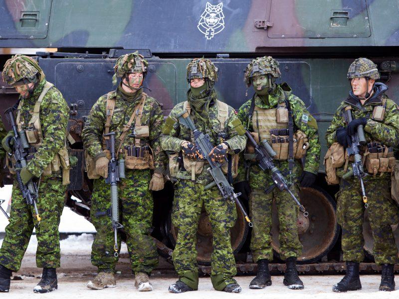 Psichologai kariuomenėje: nuo problemų sprendimo iki komandos formavimo