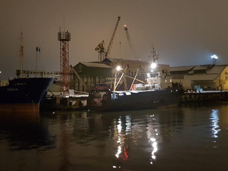 Žuvininkystės aukcionas klimpsta į bankrotą