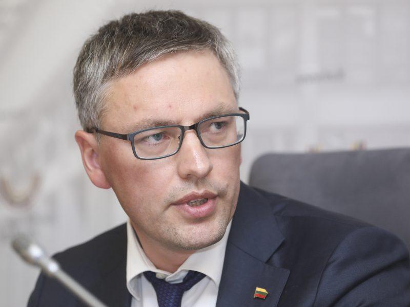 V. Bakas: Lietuvoje yra pažeidžiamų politikų