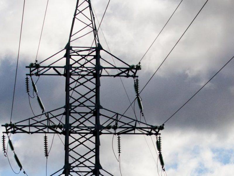 Dėl kompensacijų ūkininkams gali brangti elektra