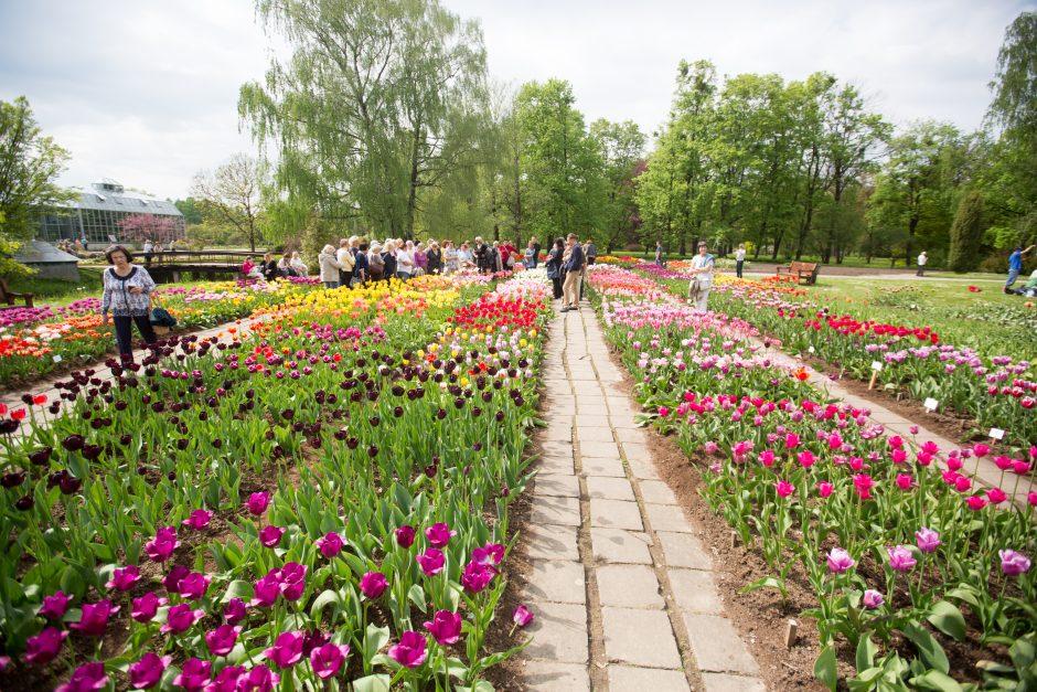 Žavadienis Kauno botanikos sode
