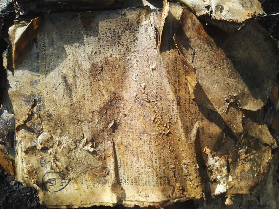 Paaiškėjo, kokie partizanų dokumentai aptikti Kauno rajone